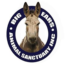 Big Ears Animal Sanctuary - horse logo 225